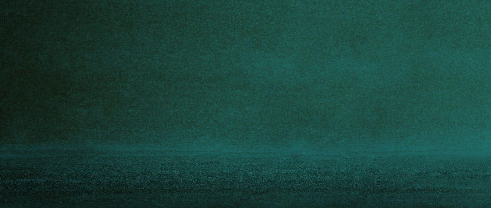 slider-green-rug-ny